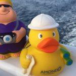Die AMONDO-Maskottchen - auf jeder Reise mit dabei